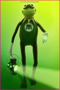 Kermit's Photo